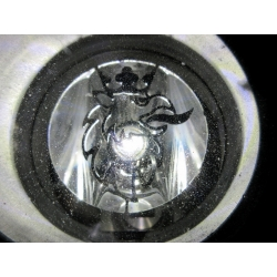 Scania* Zusatz-Scheinwerfer-Einsatz mit Greif