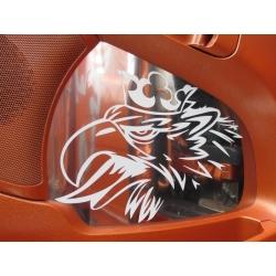Scania* Türverkleidung Edelstahl