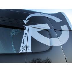 Scania* B-Säule Schriftzug (Scania)/Griffin
